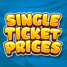 Single ticket price